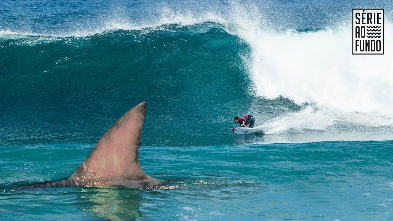Rádio Poliesportiva » WSL: O cancelamento da etapa de Margaret River por  ataques de tubarão - Rádio Poliesportiva