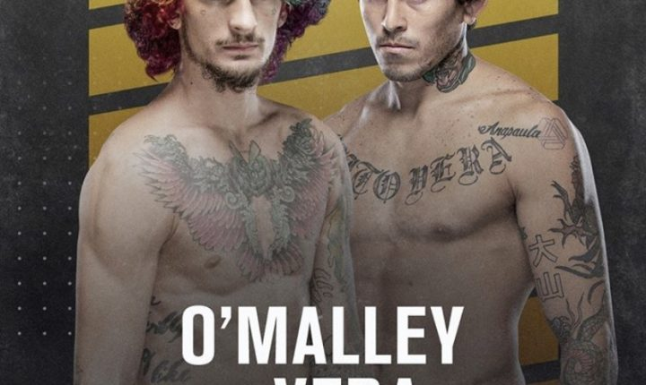 De olho no futuro, Sean O'Malley enfrenta Marlon Vera na co-luta principal do UFC 252